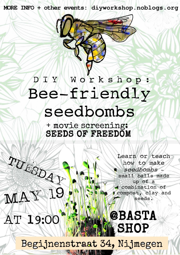 DIYW_Beefriendly seed bombs_flyer